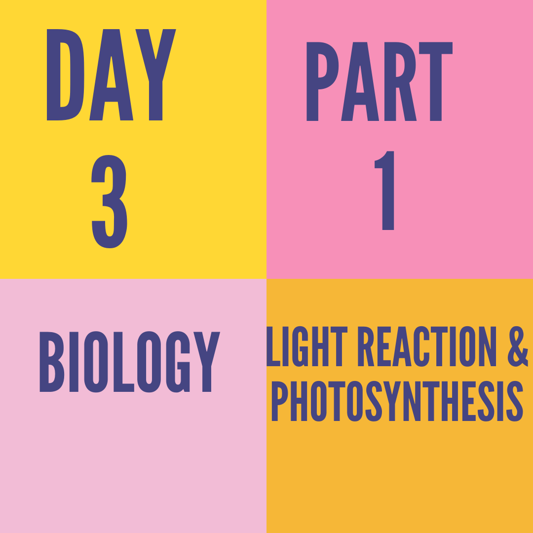DAY-3-PART-1-LIGHT REACTION & PHOTOSYNTHESIS