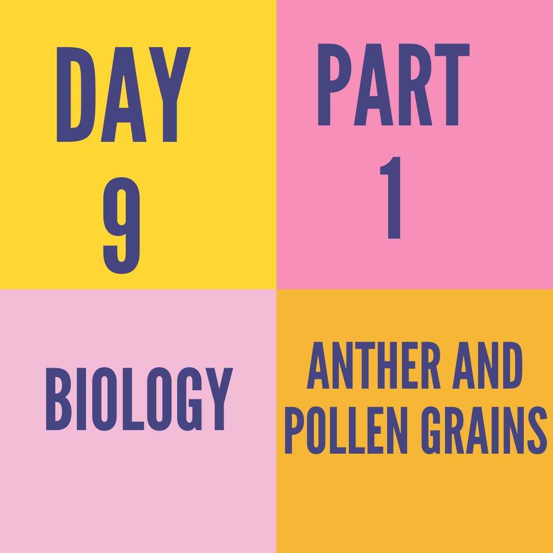 DAY-9 PART-1 ANTHER AND POLLEN GRAINS