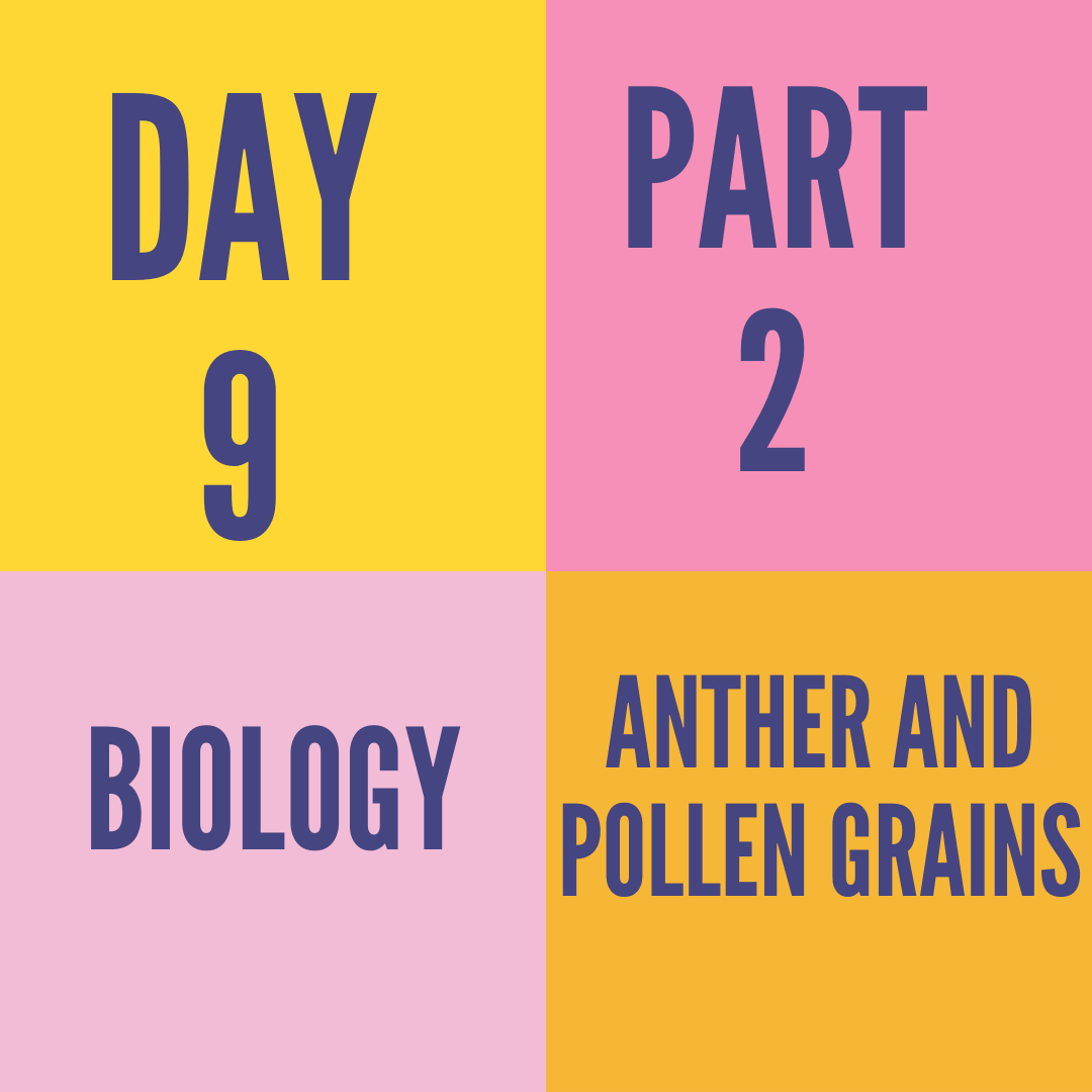 DAY-9 PART-2  ANTHER AND POLLEN GRAINS
