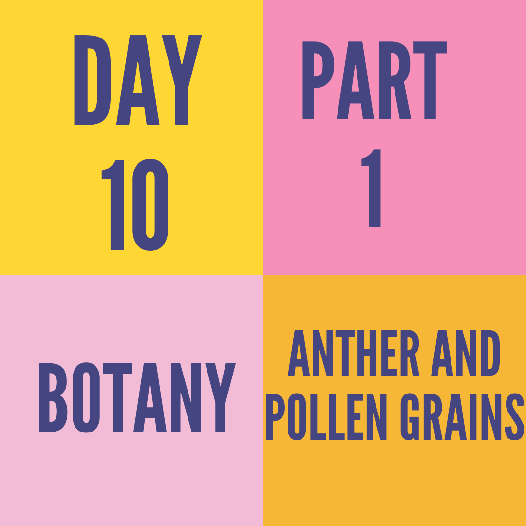 DAY-10 ANTHER AND POLLEN GRAINS