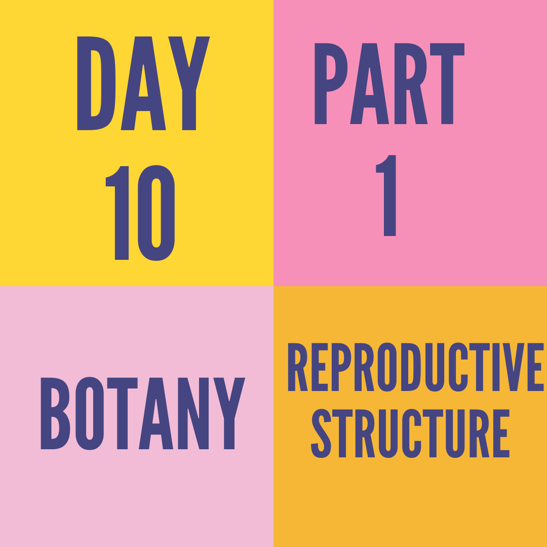 DAY-10 FEMALE REPRODUCTIVE STRUCTURE