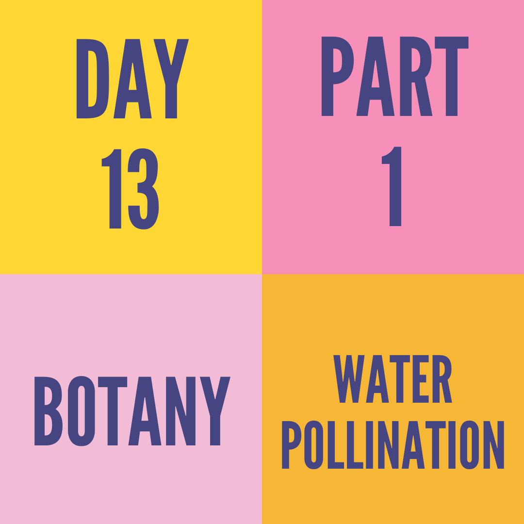 DAY-13 PART-1 WATER POLLINATION