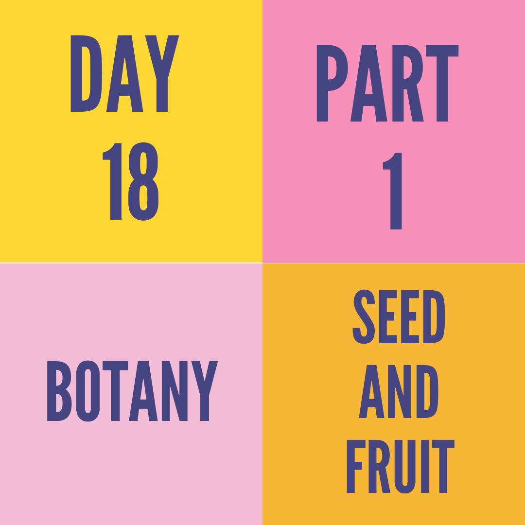 DAY-18 PART-1 SEED AND FRUIT