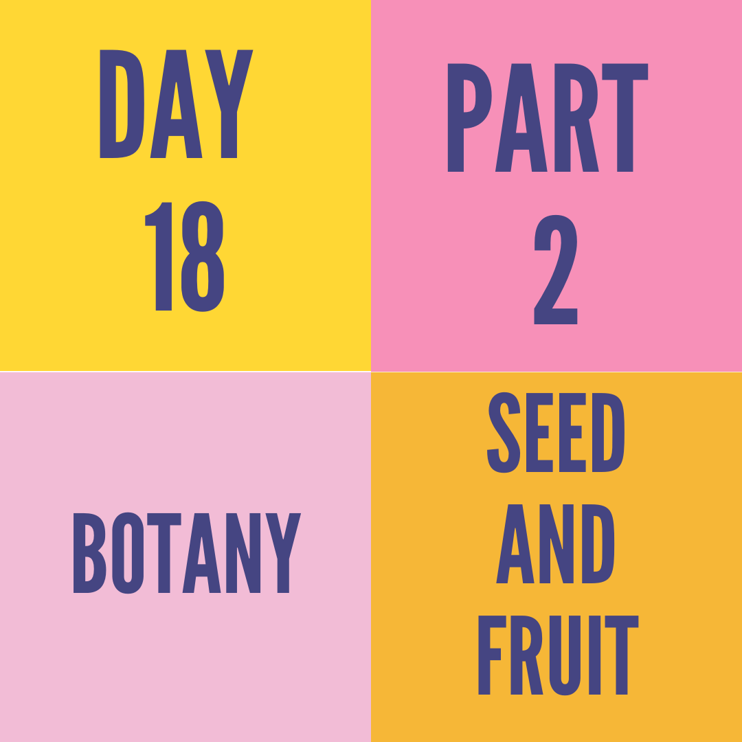 DAY-18 PART-2 SEED AND FRUIT