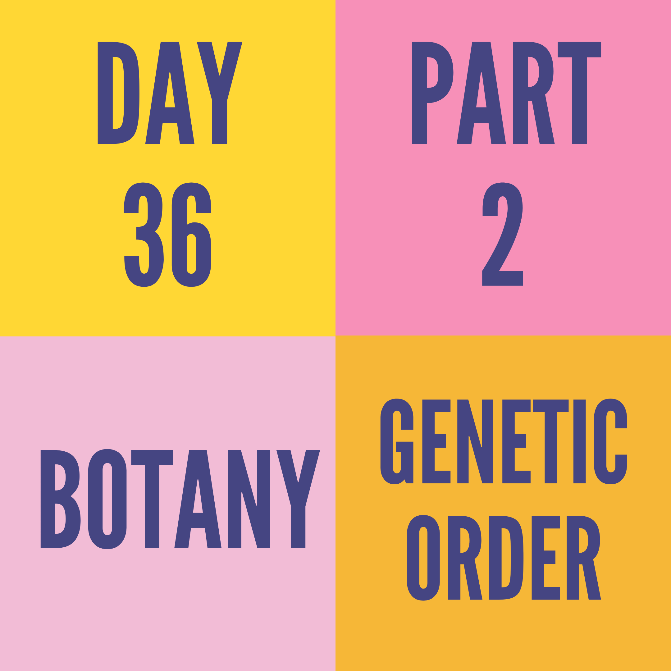 DAY-36 PART-2 GENETIC ORDER