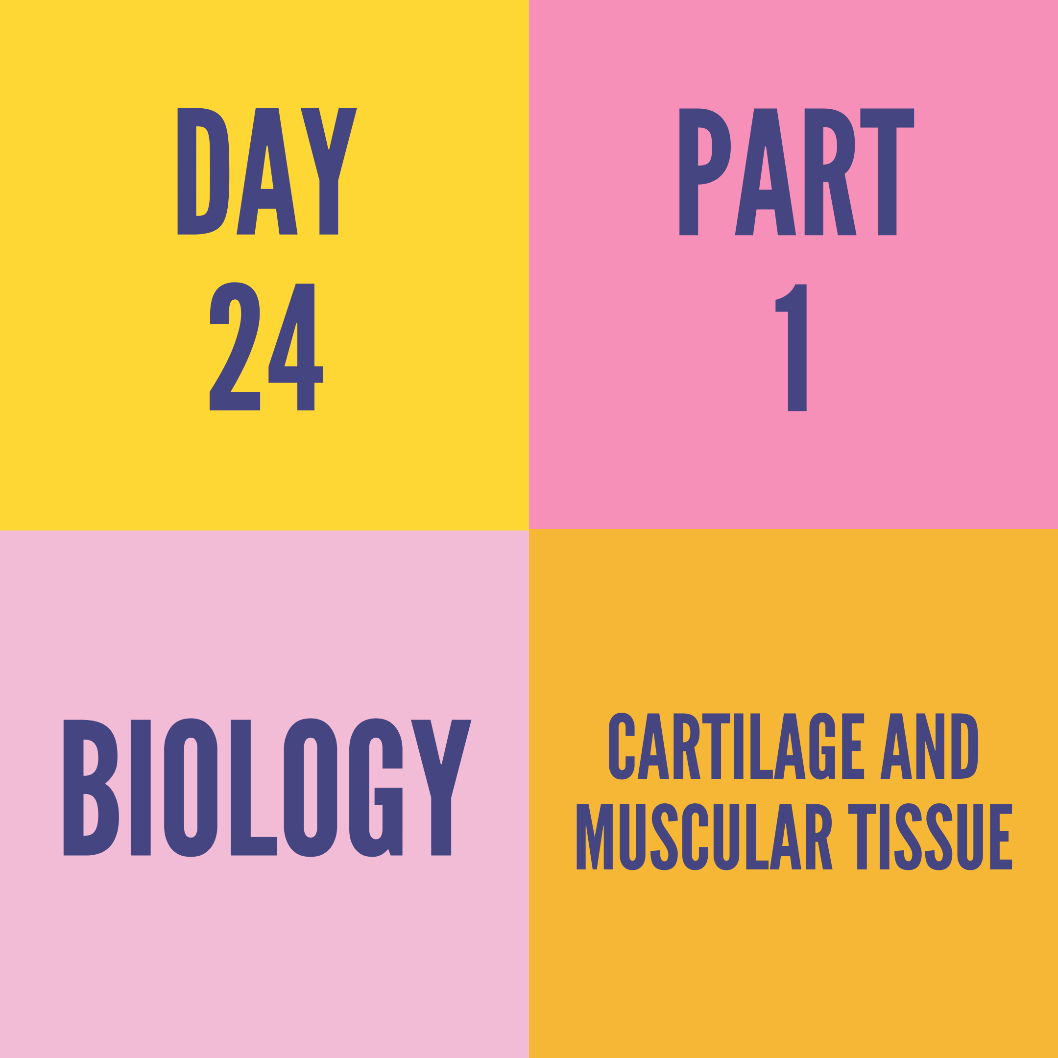 DAY-24 PART-1 CARTILAGE AND MUSCULAR TISSUE