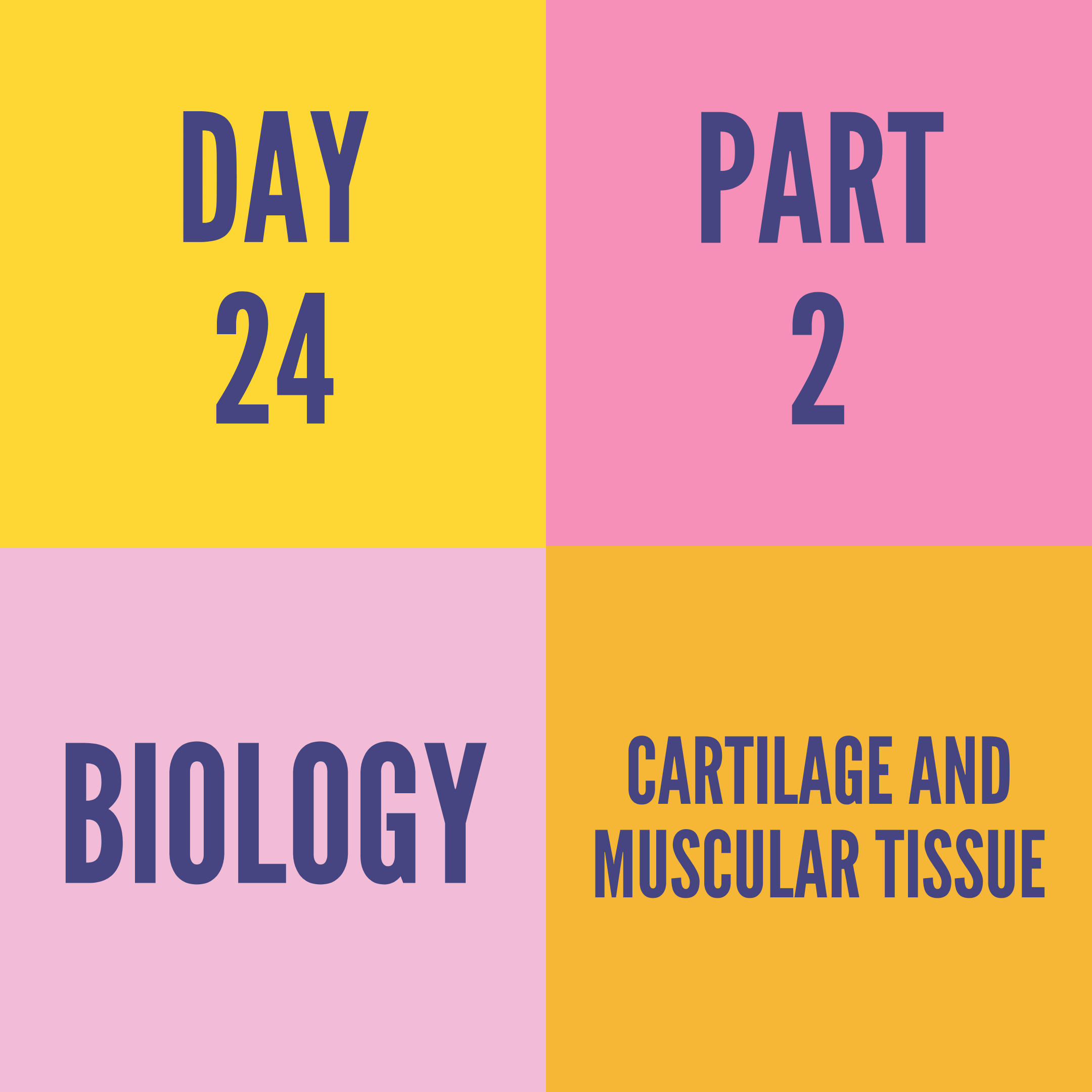 DAY-24 PART-2 CARTILAGE AND MUSCULAR TISSUE