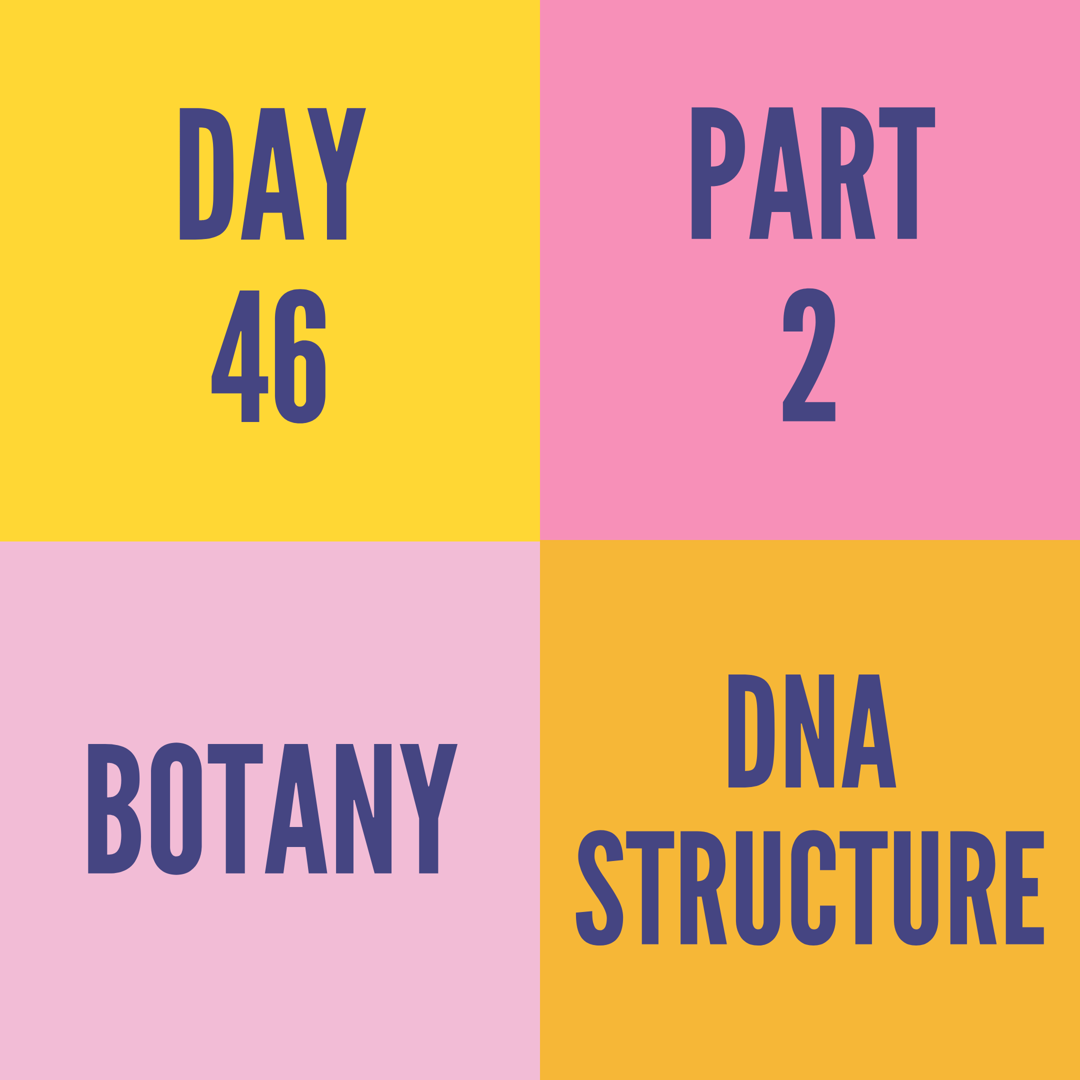 DAY-46 PART-2 DNA STRUCTURE