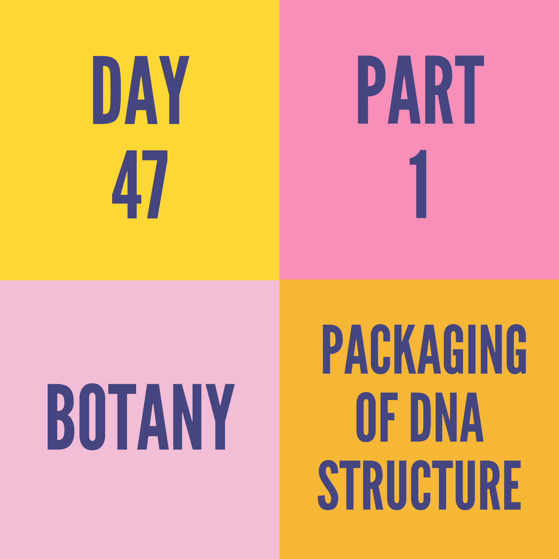 DAY-47 PART-1 PACKAGING OF DNA STRUCTURE