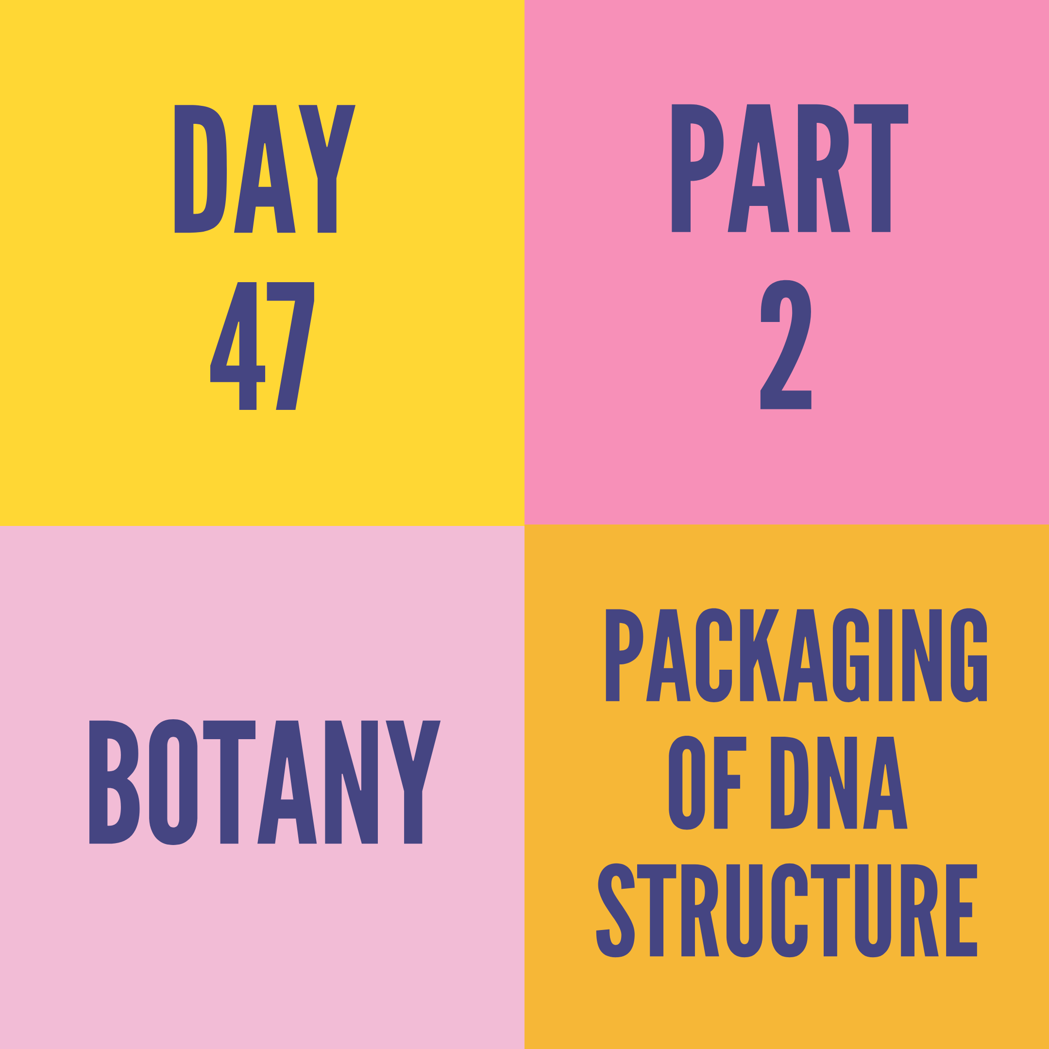 DAY-47 PART-2 PACKAGING OF DNA STRUCTURE