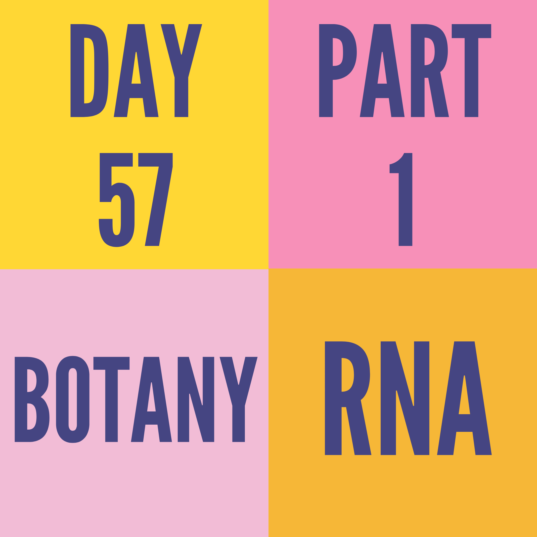 DAY-57 PART-1 RNA