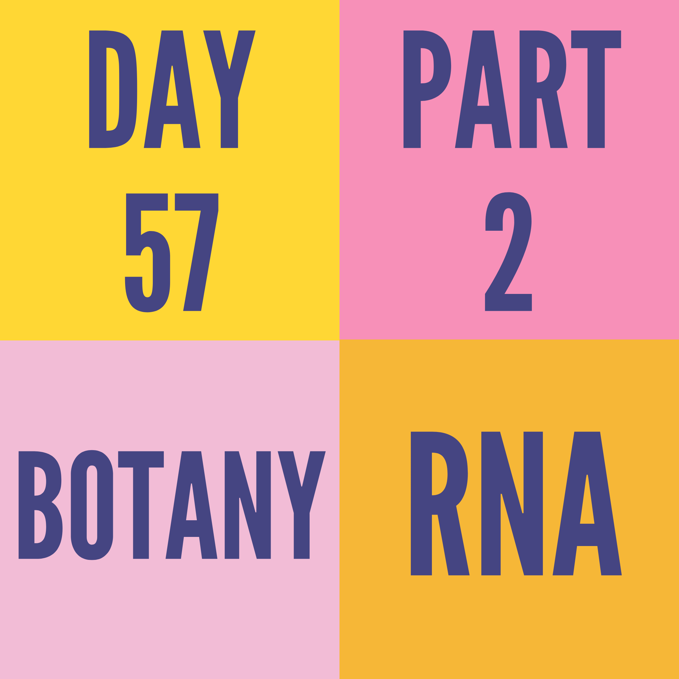 DAY-57 PART-2 RNA