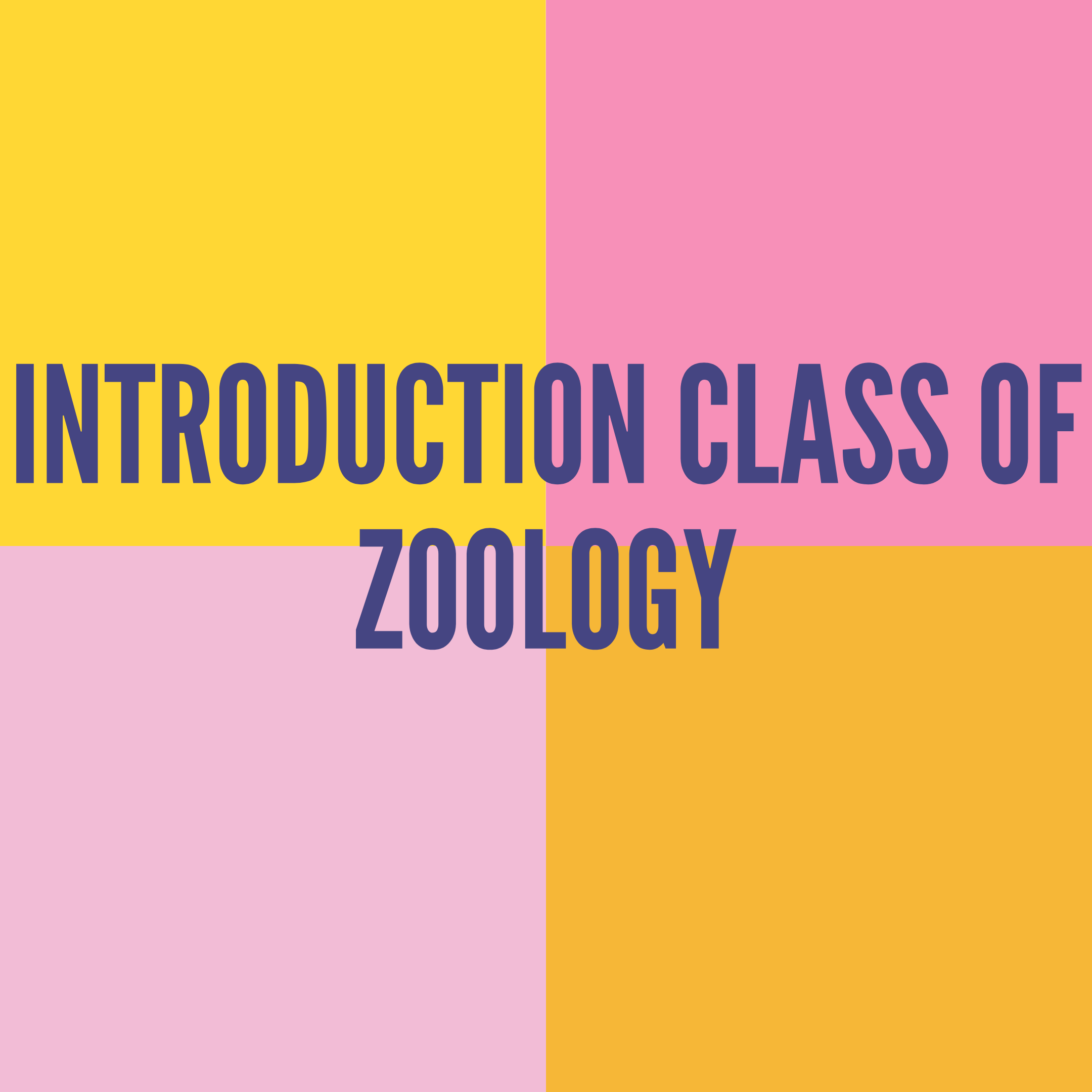 INTRODUCTION CLASS OF ZOOLOGY