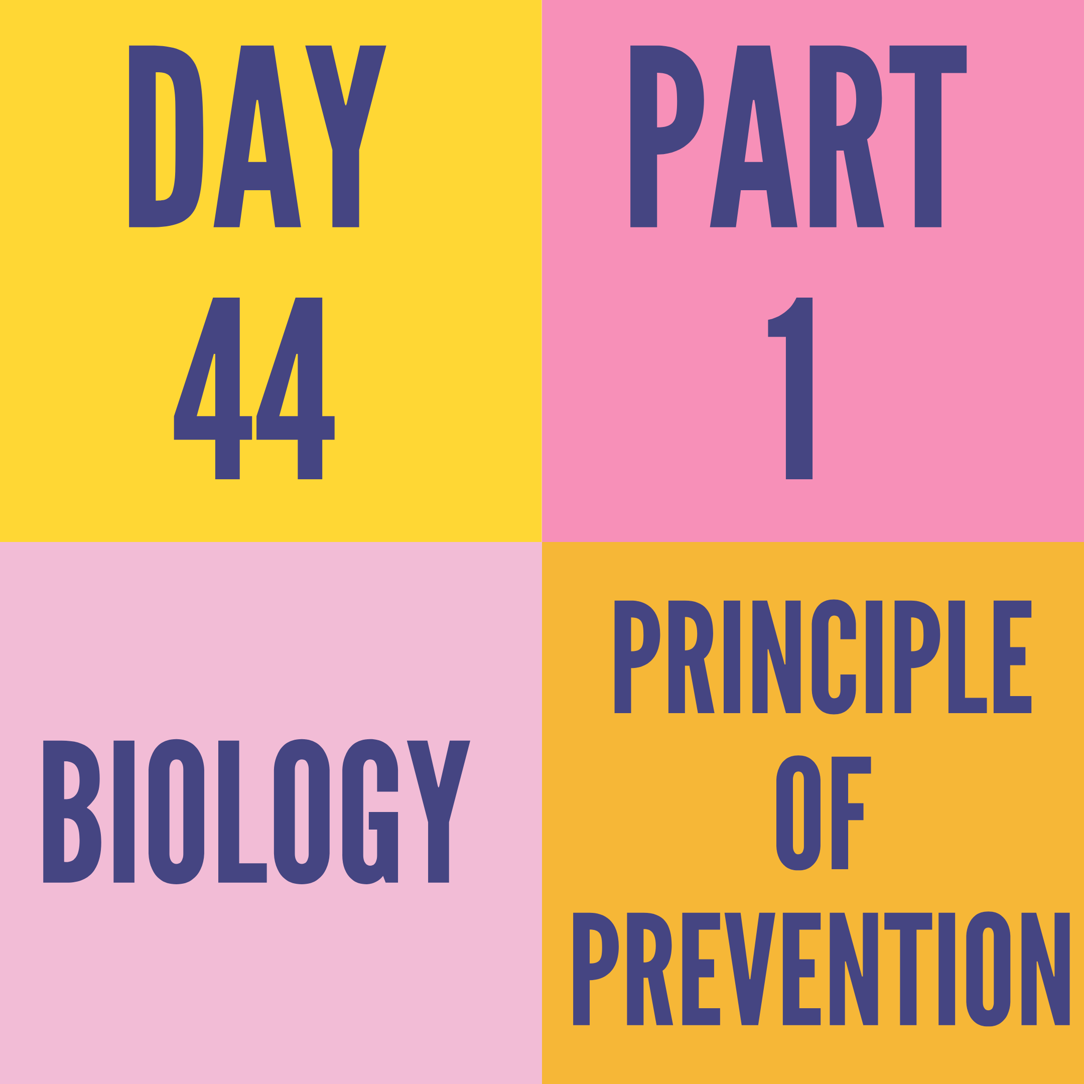 DAY-44 PART-1 PRINCIPLE OF PREVENTION