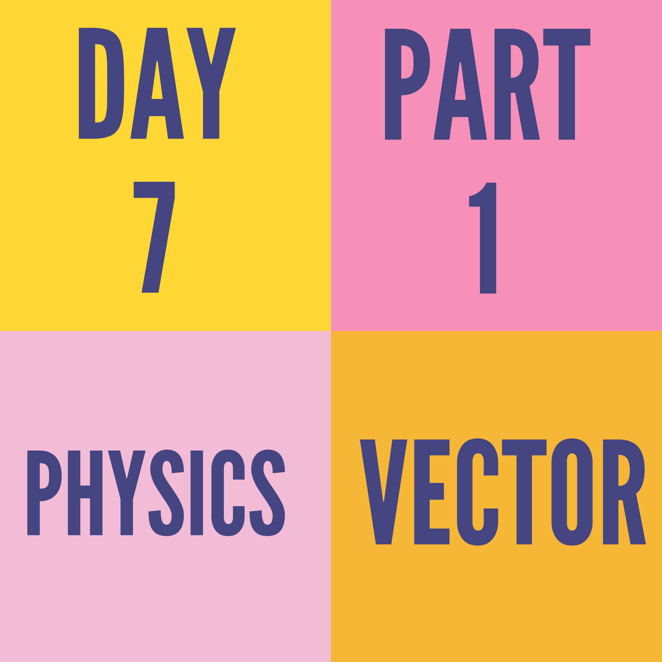 DAY-7 PART-1 VECTOR