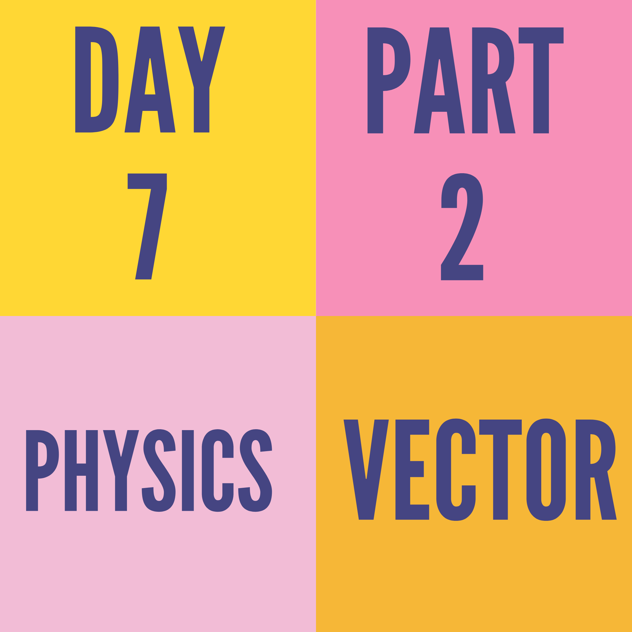 DAY-7 PART-2 VECTOR