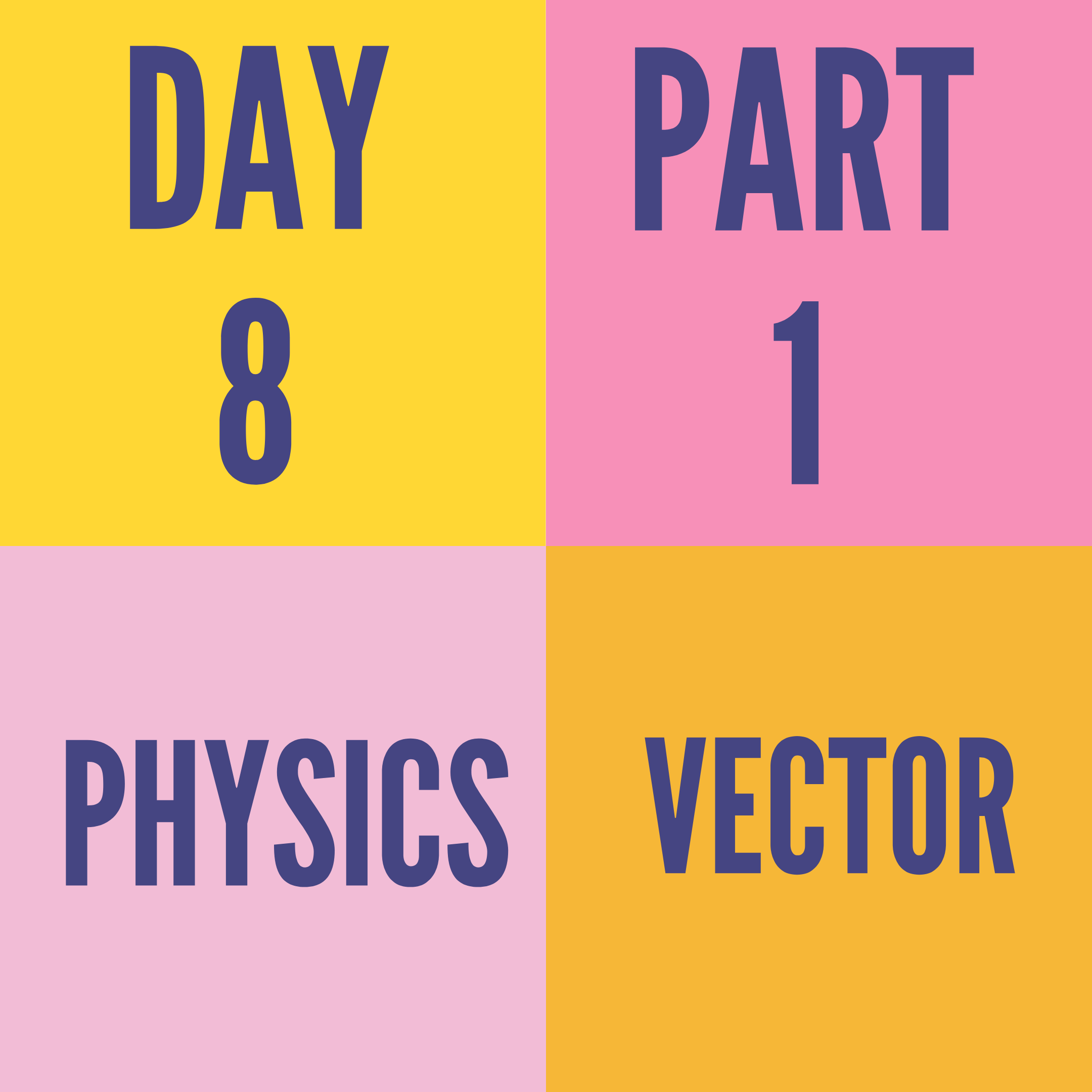 DAY-8 PART-1 VECTOR