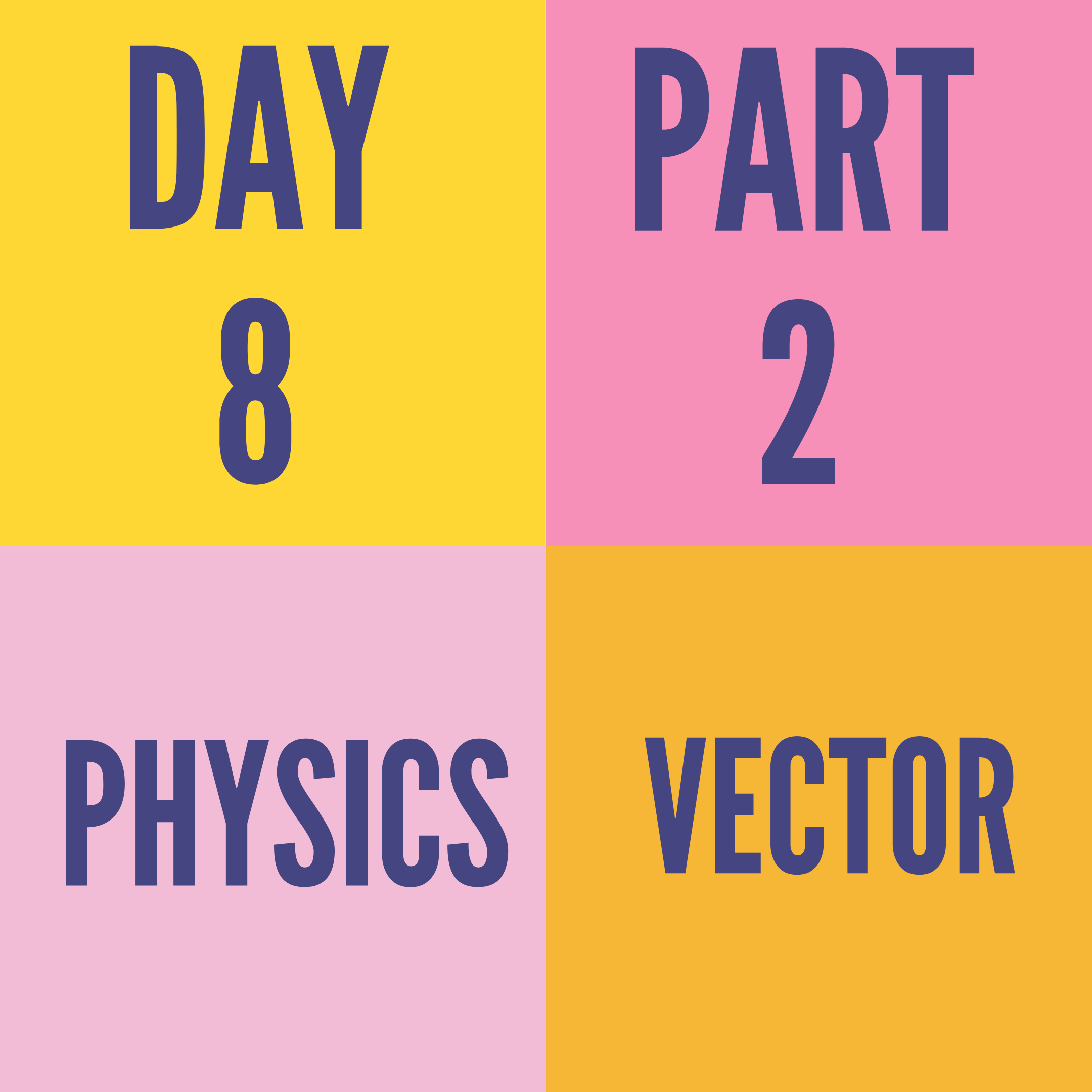 DAY-8 PART-2 VECTOR