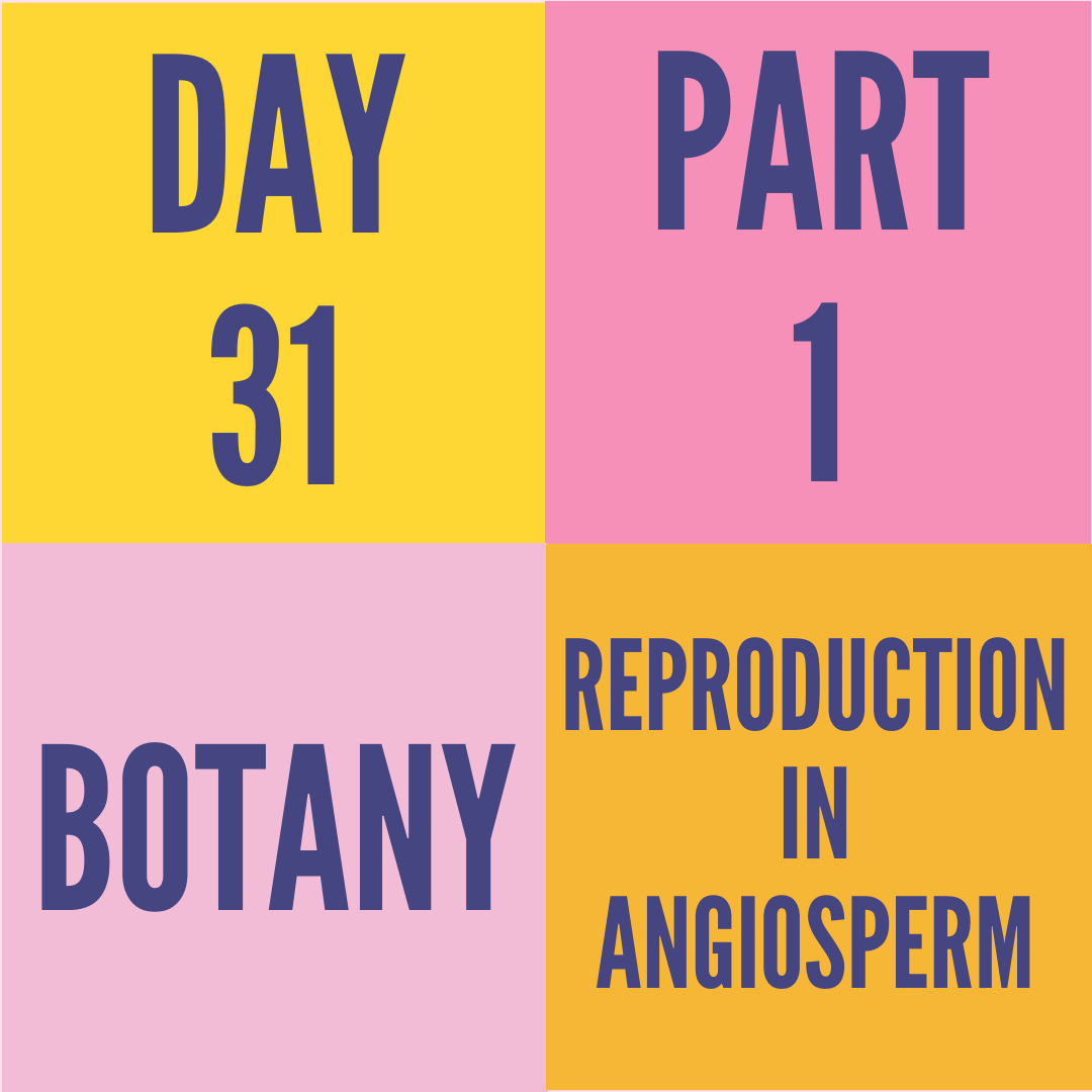 DAY-31 PART-1 REPRODUCTION IN ANGIOSPERM