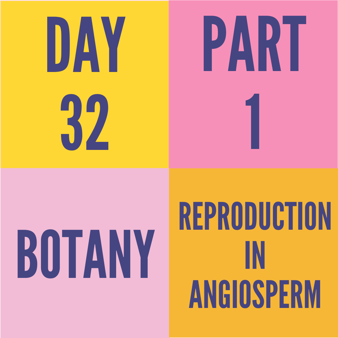 DAY-32 PART-1 REPRODUCTION IN ANGIOSPERM