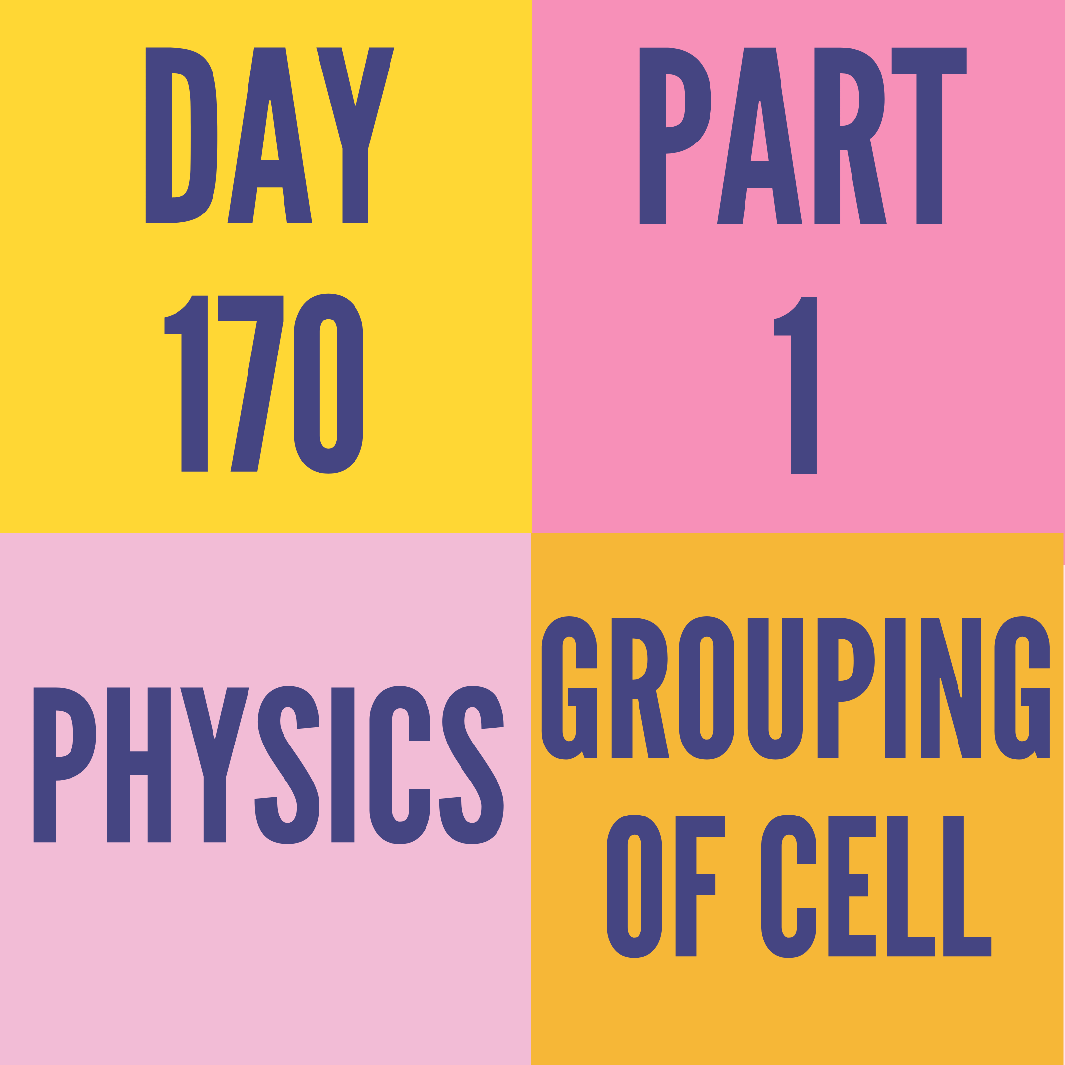 DAY-170 PART-1 GROUPING OF CELL