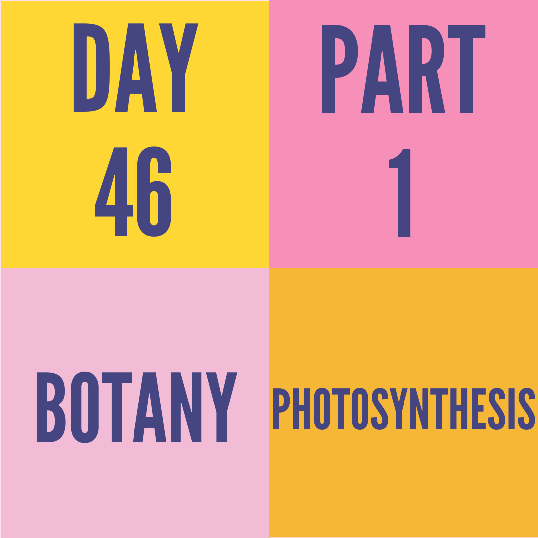 DAY-46 PART-1 PHOTOSYNTHESIS