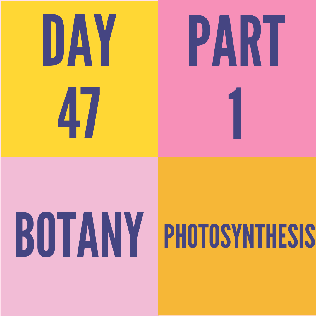 DAY-47 PART-1 PHOTOSYNTHESIS