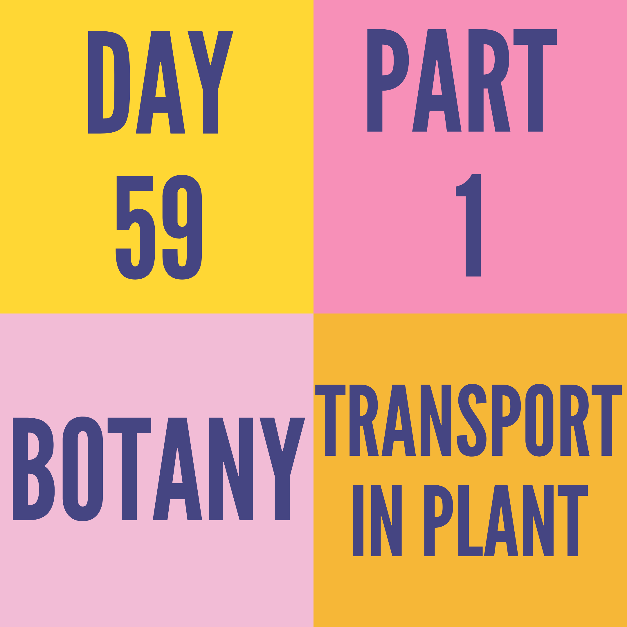 DAY-59 PART-1 TRANSPORT IN PLANT