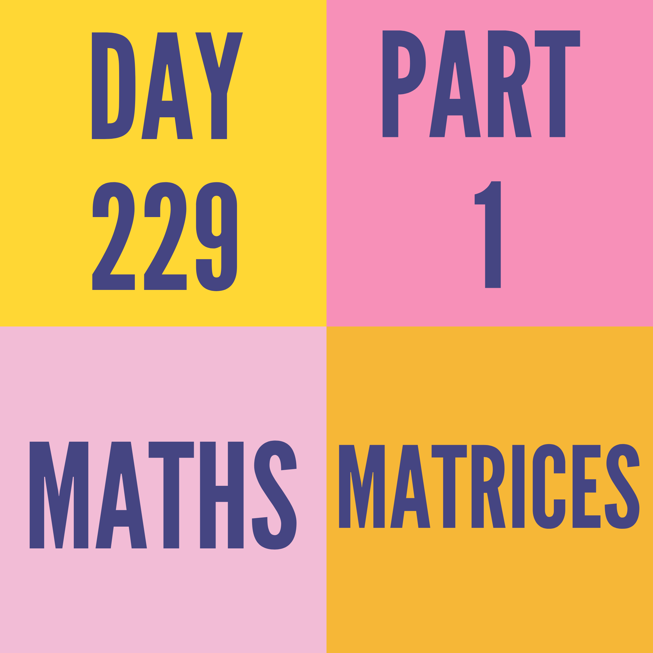 DAY-229 PART-1 MATRICES
