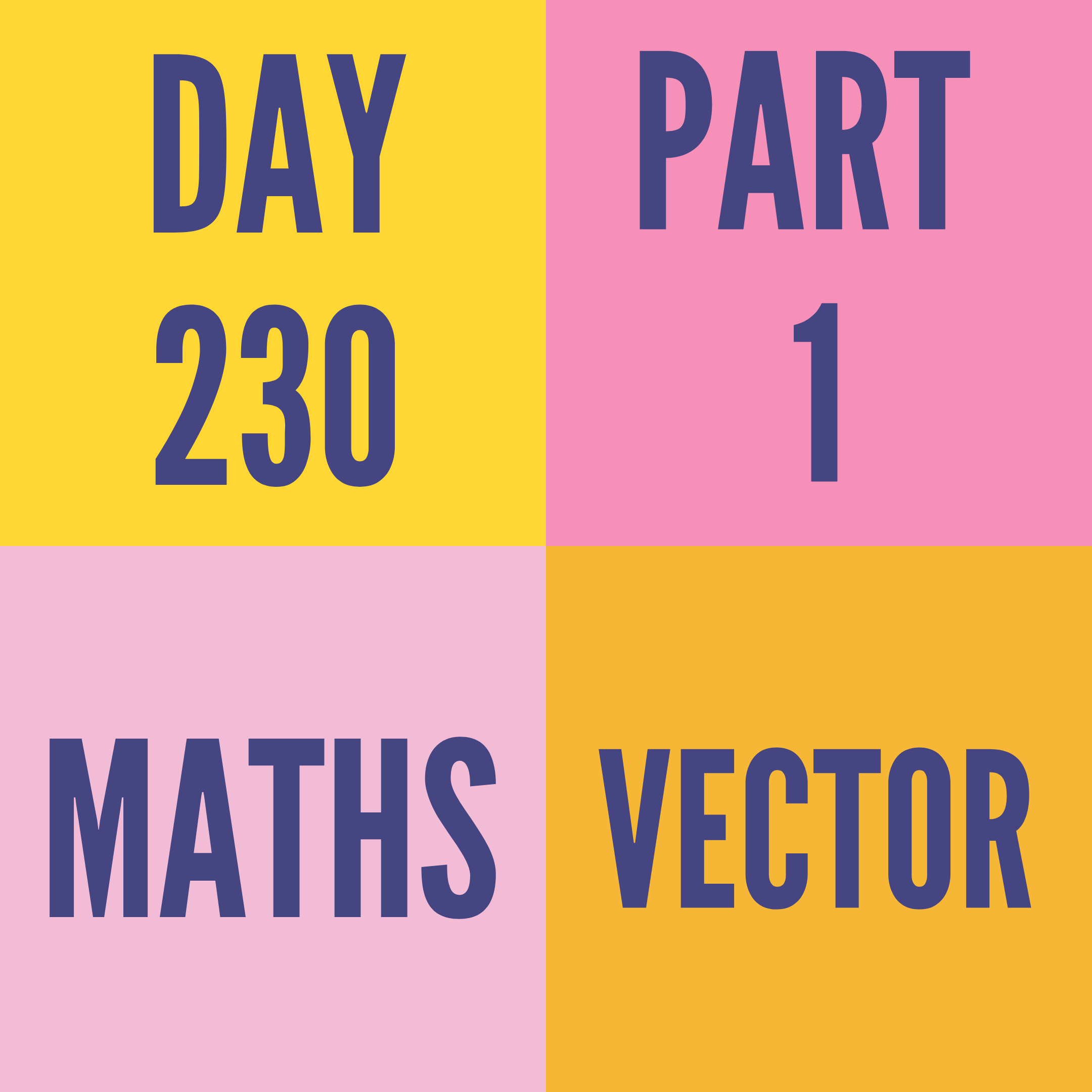 DAY-230 PART-1 VECTOR